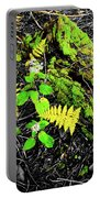 Flora Portable Battery Charger