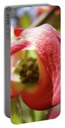 Floral Art Pink Dogwood Flowers Baslee Troutman Portable Battery Charger