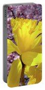 Floral Fine Art Daffodils Art Prints Spring Flowers Sunlit Baslee Troutman Portable Battery Charger