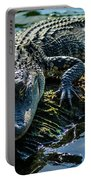 Florida Alligator Portable Battery Charger