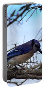 Florida Blue Jay Portable Battery Charger