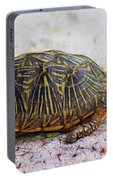 Florida Box Turtle Portable Battery Charger