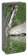Florida Brown Pelican Portable Battery Charger