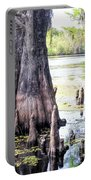Florida Cypress, Hillsborough River, Fl Portable Battery Charger