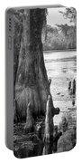 Florida Cypress, Hillsborough River, Fl In Black And White Portable Battery Charger
