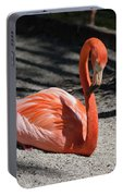Florida Flamingo Portable Battery Charger
