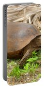 Florida Gopher Tortoise Portable Battery Charger