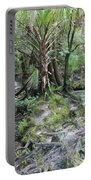 Florida Landscape - Lithia Springs Portable Battery Charger by Carol Groenen