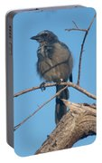 Florida Scrub Jay Watching The Lay Of The Scrub Portable Battery Charger