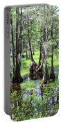 Florida Swamp Portable Battery Charger
