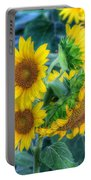 Flower #40 Portable Battery Charger