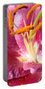 Flower Art Prints Pink Orange Lily Flower Giclee Baslee Troutman Portable Battery Charger
