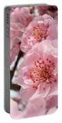 Flower Blossoms Art Spring Trees Pink Blossom Baslee Troutman Portable Battery Charger