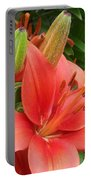 Flower Close Up 4 Portable Battery Charger