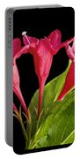 Flower Composite Trio Horizontal Portable Battery Charger