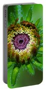 Flower Eye Portable Battery Charger