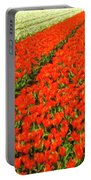 Flower Farm 2 Portable Battery Charger