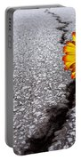 Flower In Asphalt Portable Battery Charger by Carlos Caetano
