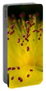 Flower In Macro Portable Battery Charger