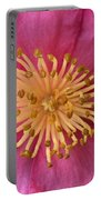 Flower Macro Portable Battery Charger