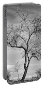 Trees Are Talking To Us Portable Battery Charger
