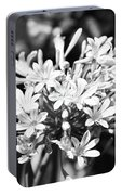 Flowering Blue African Lily Of The Nile Portable Battery Charger