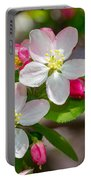 Flowering Cherry Tree Blossoms Portable Battery Charger