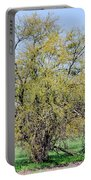 Flowering Huisache Tree  Portable Battery Charger