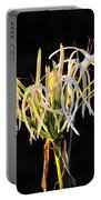 Flowering In Florida Portable Battery Charger