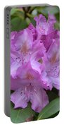 Flowering Pink Rhododendron Blossoms On A Bush Portable Battery Charger