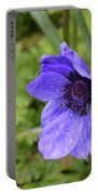 Flowering Purple Anemone Flower Blossom In A Garden Portable Battery Charger
