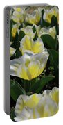 Flowering Yellow And White Tulips In A Spring Garden  Portable Battery Charger