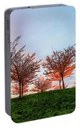 Flowering Young Cherry Trees On A Green Hill In The Park  Portable Battery Charger