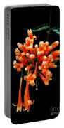 Flowers 69 Portable Battery Charger