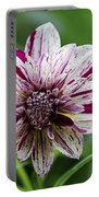 Flowers 70 Portable Battery Charger