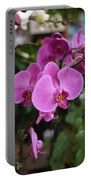 Flowers 820 Portable Battery Charger