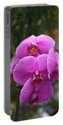 Flowers 822 Portable Battery Charger