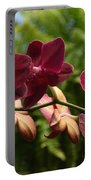 Flowers 823 Portable Battery Charger