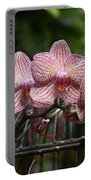 Flowers 826 Portable Battery Charger