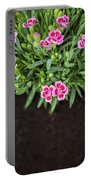 Flowers In Grass Growing From Natural Clean Soil Portable Battery Charger