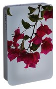Flowers In The Sky Portable Battery Charger