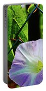 Flowers On The Fence 1 Portable Battery Charger