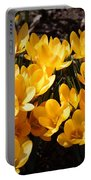 Flowery Sunshine Portable Battery Charger