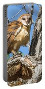 Fluffed Up Barn Owl Owlet Portable Battery Charger