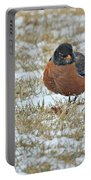 Fluffy Robin In Snow Portable Battery Charger