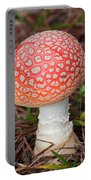 Fly Agaric Mushroom Portable Battery Charger