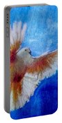 Fly Away Portable Battery Charger