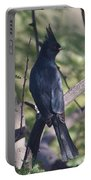 Silky Flycatcher Portable Battery Charger