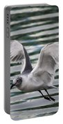 Flying Seagull Portable Battery Charger by Carol Groenen