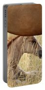 Foal And Mare In A Saskatchewan Pasture Portable Battery Charger